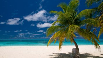 Wallpapers Photography Beach 1366x768 Tags Windows 10 Windows 8