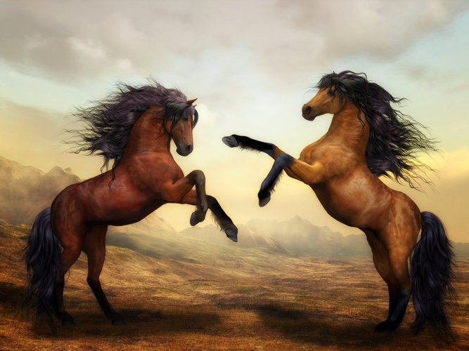 Download Wallpaper With Animals Horse With Tags Artistic Horse