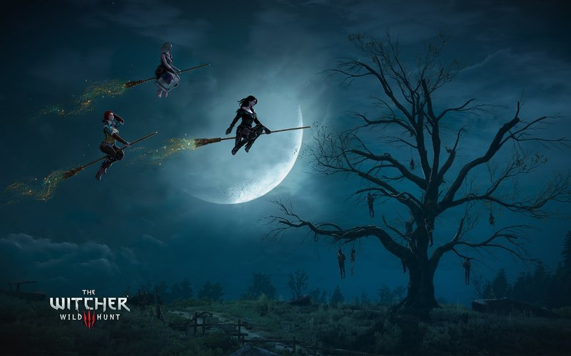 Download Wallpaper From Game The Witcher 3 Wild Hunt With